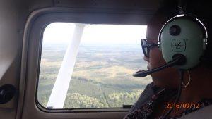 Asha James Flying Falconair
