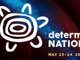 nan determination logo